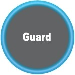 PEEK Hardware Guard