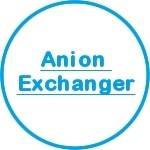 Anion Exchanger