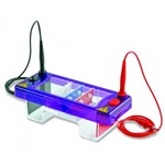Gel electrophoresis tank MultiSUB Mini Duo-Set